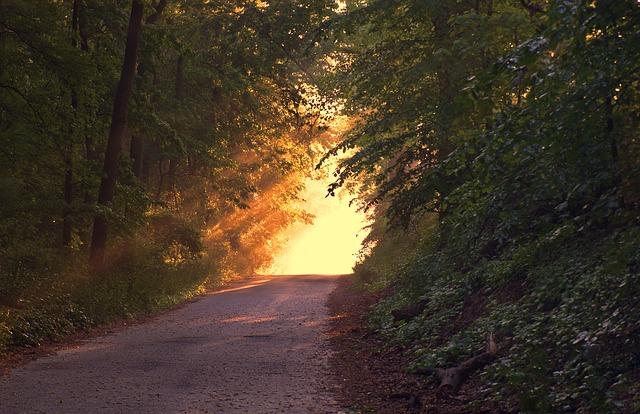 slnečné svetlo