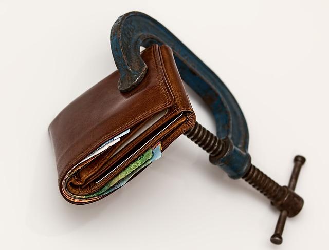 úzká peněženka